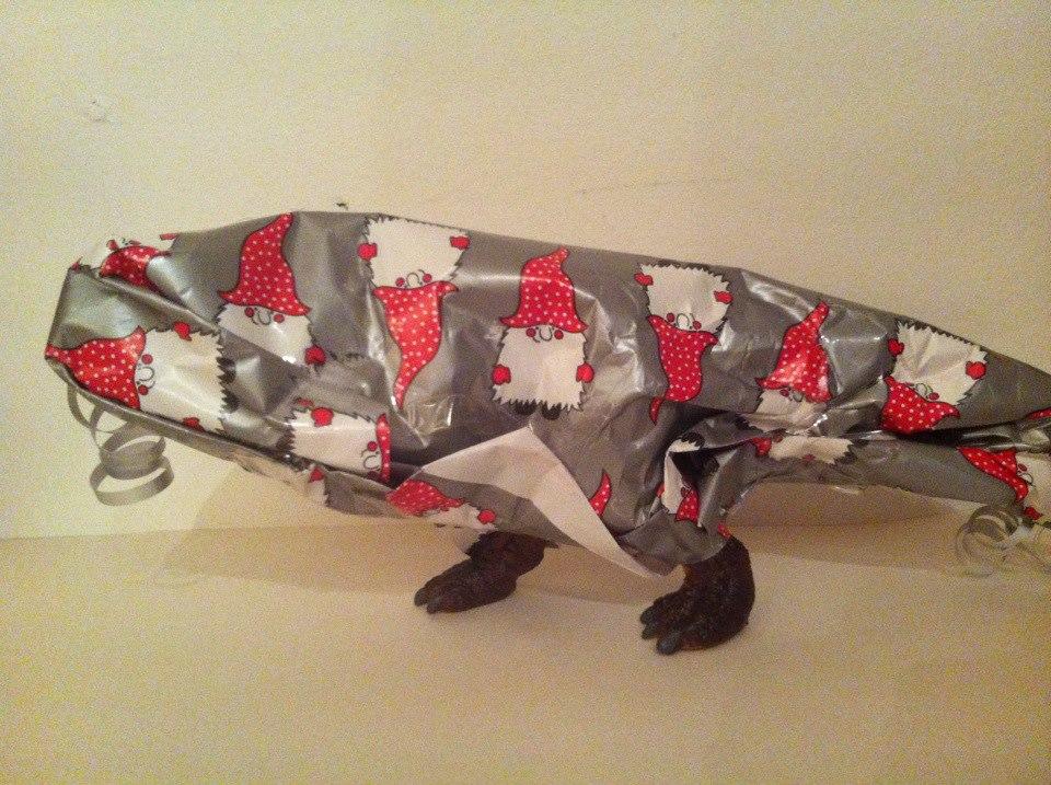 Paket T-rex julklapp dinosaurie